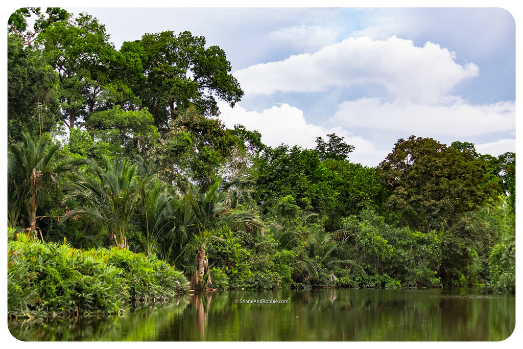 Borneo-20170407-IMG_6968