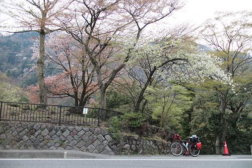 xlrider-cycling-japan-083