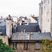 #4448 Roofs of Paris by Bob Parinaud