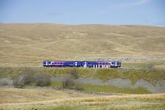 Northern Rail DMU bij Ribblehead Viaduct 02-05-2013