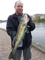 Haakon 65 cm snoekbaars