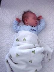 sleeping nathan