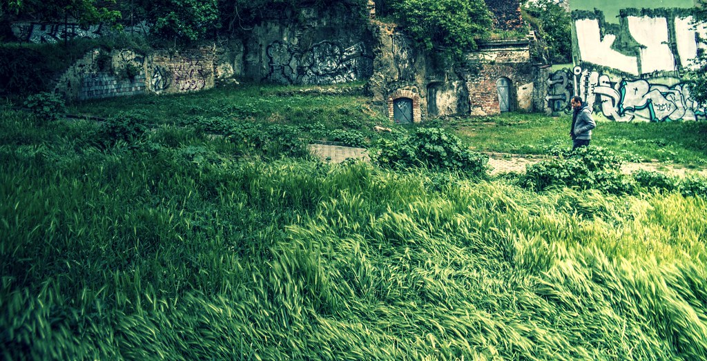 Man, Grass, Wind and Ruins