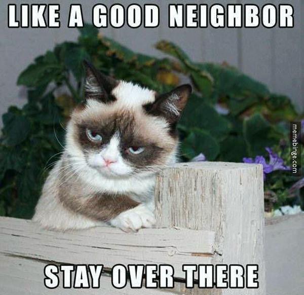 Grumpy Cat Good Luck Meme
