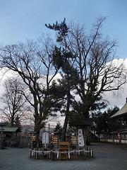 shrine182