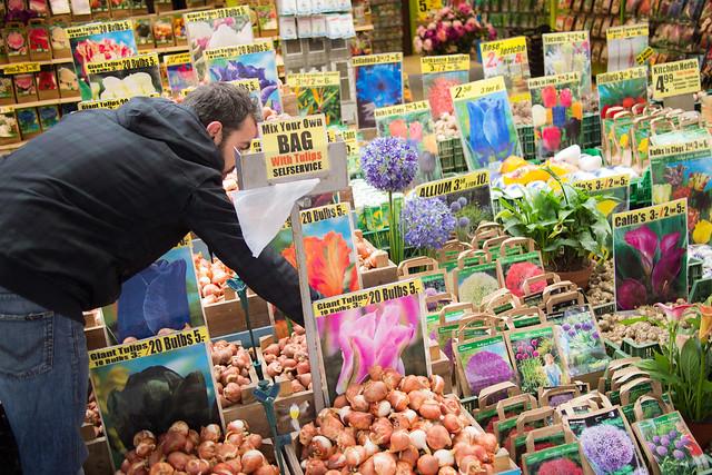 Amsterdam 06 flower market