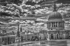 St Paul's - Monochrome