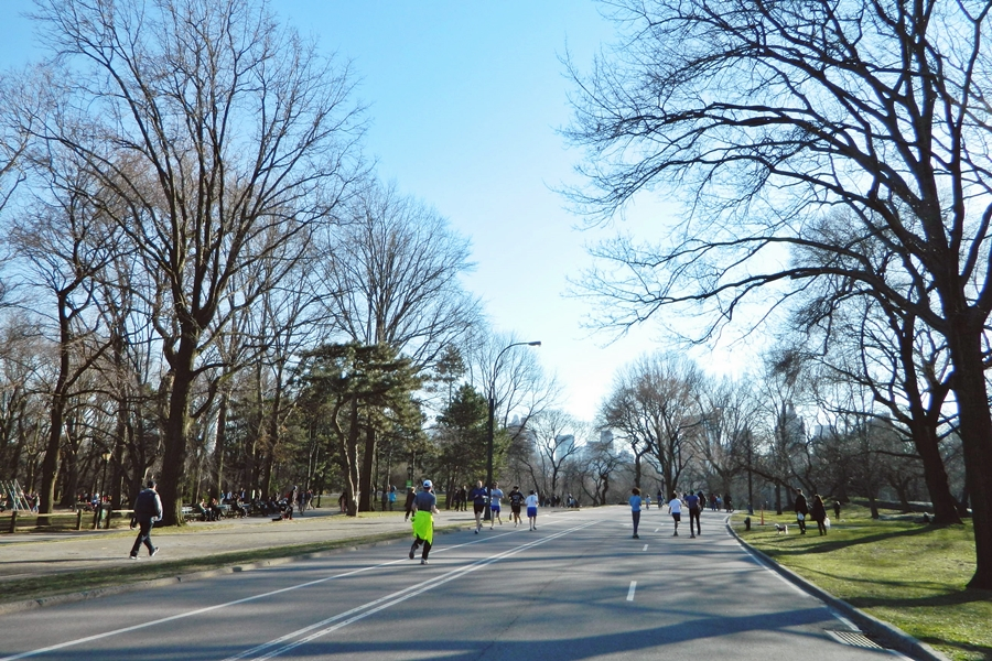 Central Park (1)