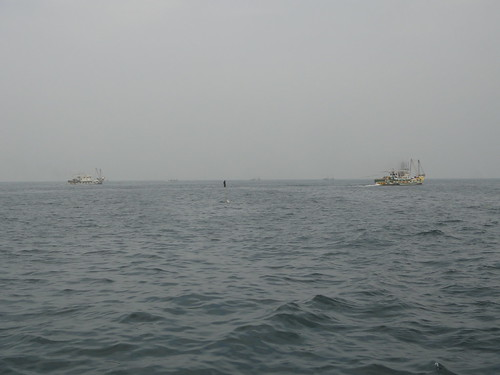 高雄壽山外海靠近左營軍港南防波堤,底拖網。圖片來源:黑潮海洋文教基金會;攝影:鄭明修