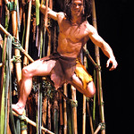 Arvada Center Tarzan The Stage Musical photo P. Switzer 2014 - Pictured: Brian Ogilvie (Tarzan)