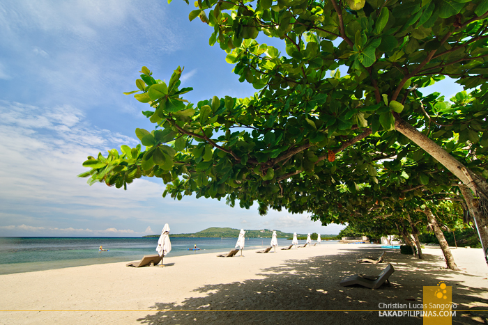 The Beach at Astoria Bohol Resort