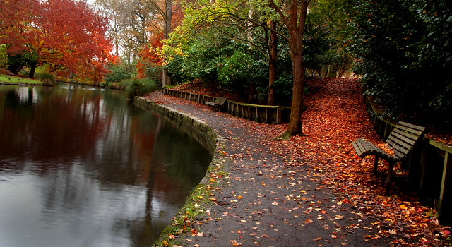 Autumn Christchurch NZ