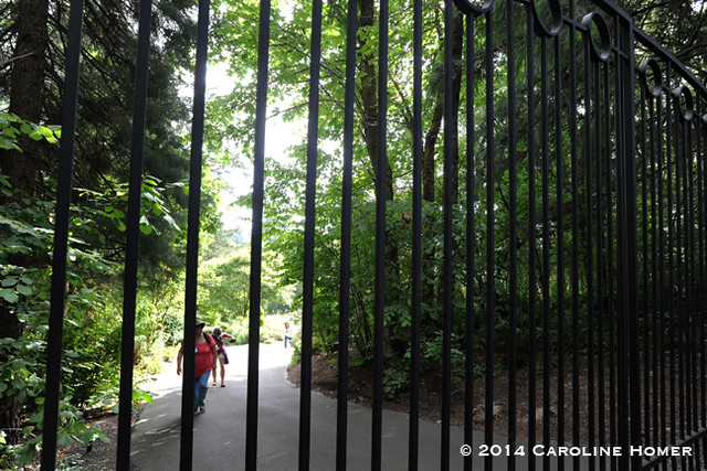 up the hill through the gate