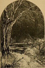 """Image from page 24 of """"Bryant. Poems from the works of William Cullen Bryant"""" (1884)"""