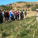 Conservation Agriculture explained by farmers to farmers - Lesotho