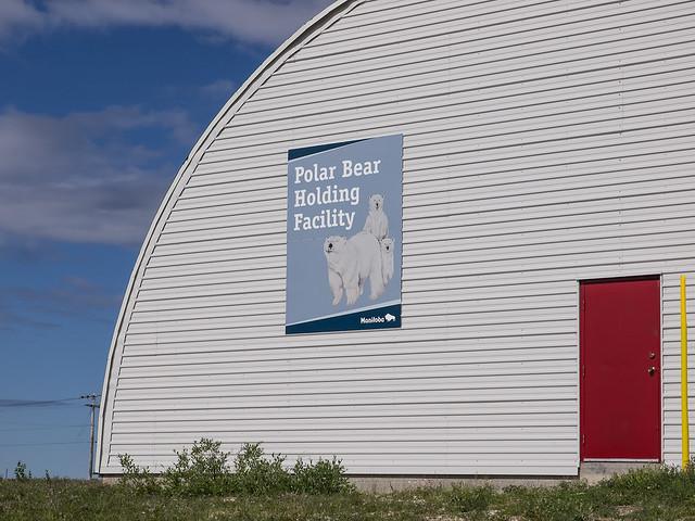 Polar Bear Jail