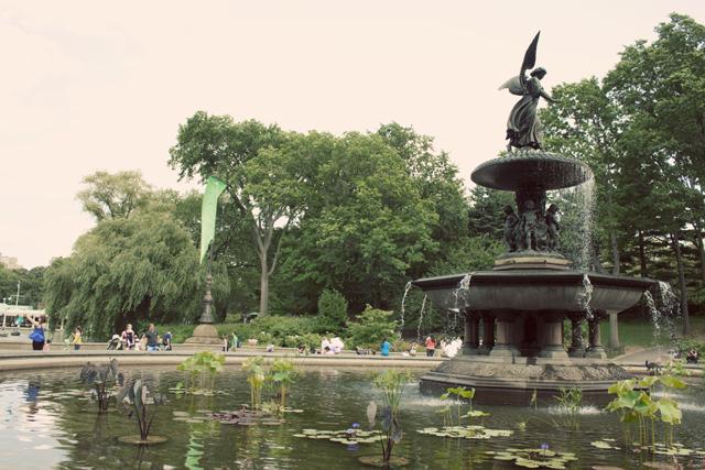 park_11