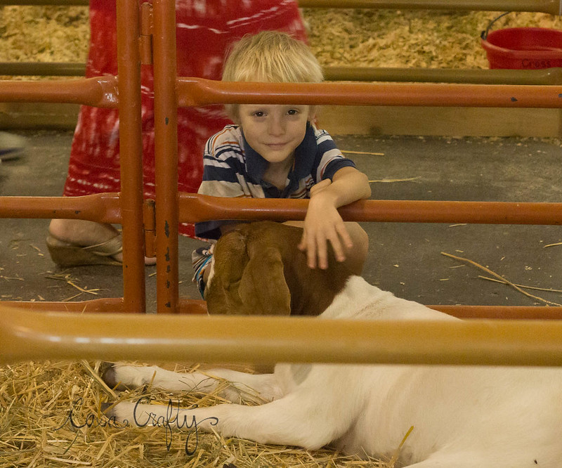 deschutes county fair 2014