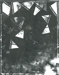 Rayograph #2