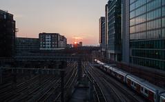 Hammersmith and City train heading west from Paddington