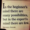 In the beginner's mind there are many possibilities, but in the expert's mind there are few. - Shunryu Suzuki