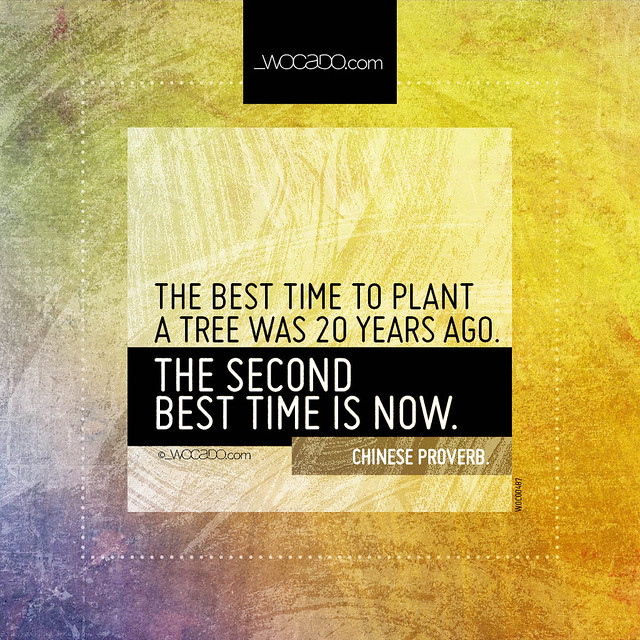 The best time to plant a tree by WOCADO.com