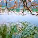 _U1H9211 Reflection,Hoan Kiem Lake,0317 by HUONGBEO PHOTO