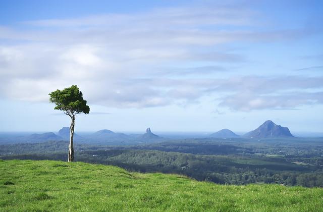 One Tree Hill, Queensland Australia