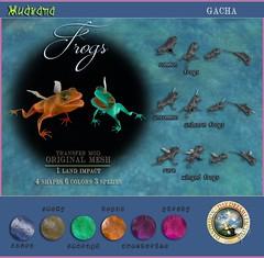 DDDF MUDRANA  frogs gacha