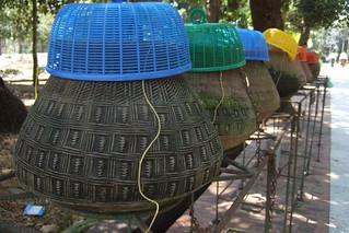 Pots with drinking water