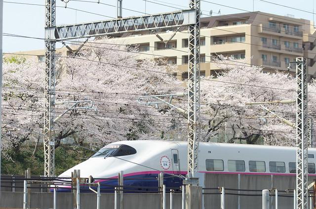 Tokyo Train Story 東北新幹線 2014年4月1日