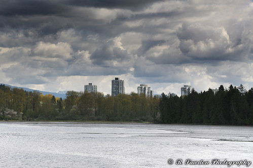 Port Moody Skyline