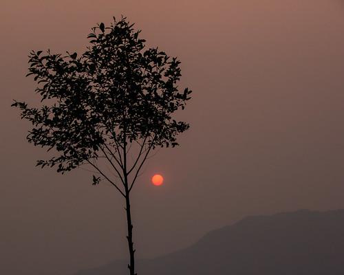travel nepal sunset tree asia countries p kathmandu southasia budhanilkantha travelphotography 2013 centralregion shivapurinationalpark dandagaon