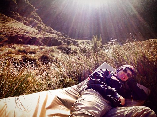I found this bed on the Routeburn Track