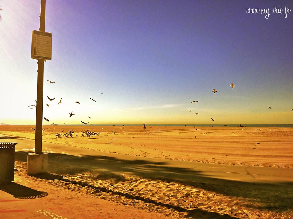 Les plages de Venice Beach.