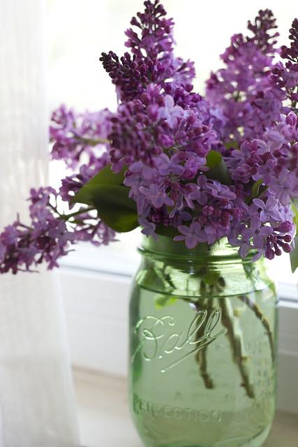 Lilacs on Window sill