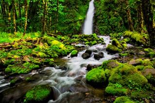 Lower Ruckel Falls