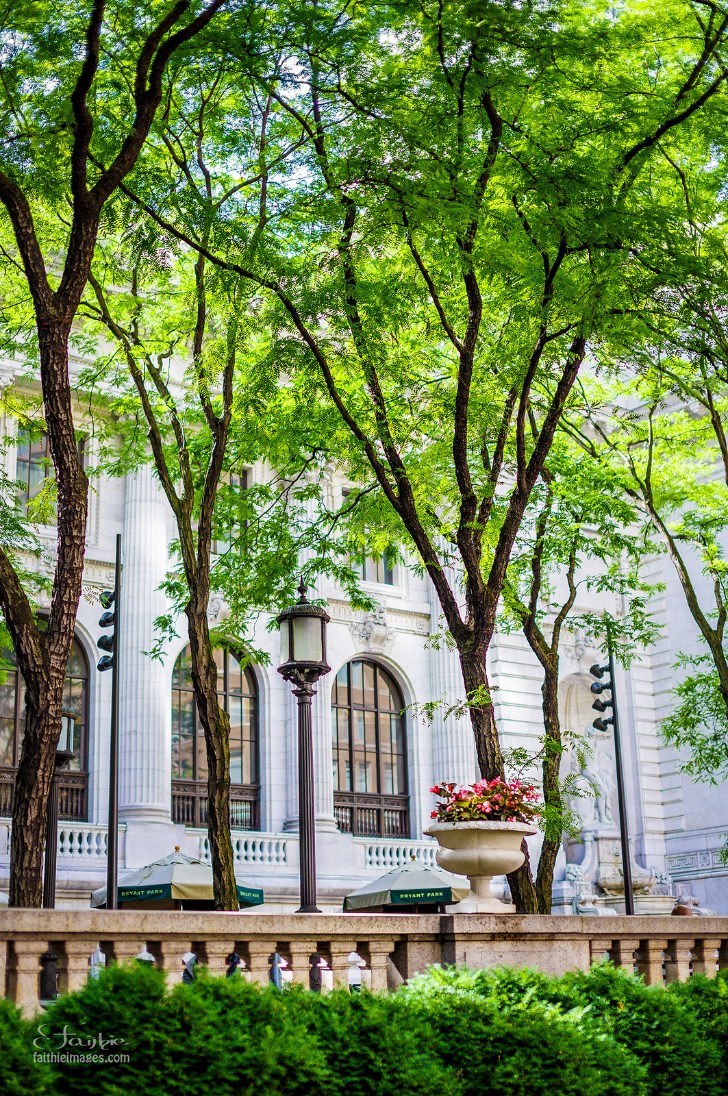 Green and charming corners of New York city centre