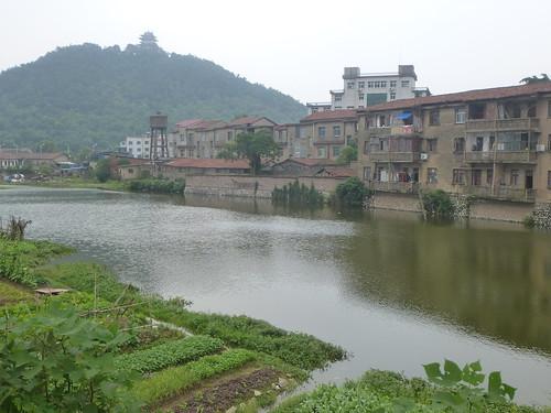 Jiangxi-Yushan (122)