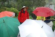 下著小雨的茶山別有一番風情,大家撐傘認真聽著巡守隊錫時大哥精彩的解說。