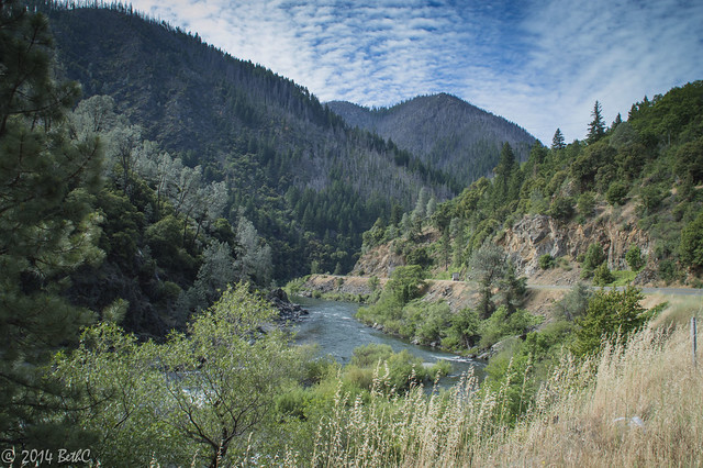 142-365 Humboldt Mountain Beauty