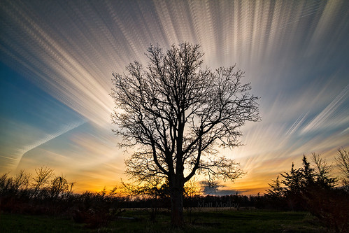 Reach for the Clouds by Matt Molloy
