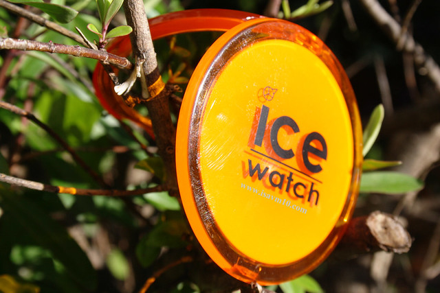 espejo ice watch