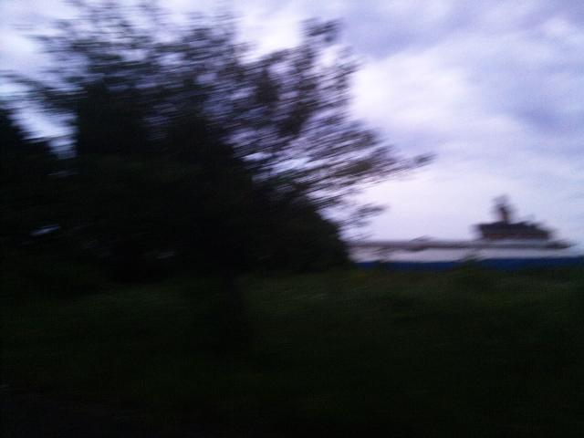 PIC_1379