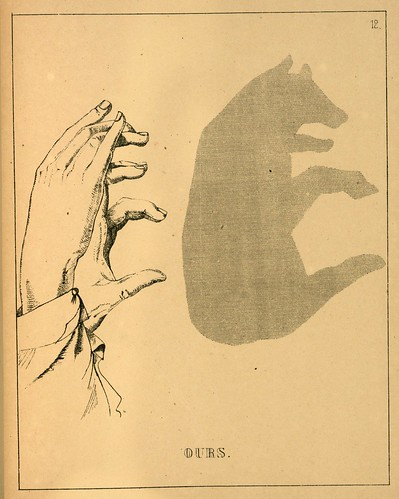 009- El oso-Ombromanie. Premièr série-1860- The Art Walters Museum