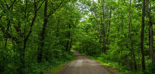 Ridge Run Park Path