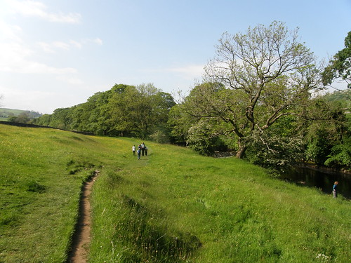 Ribble-side meadow
