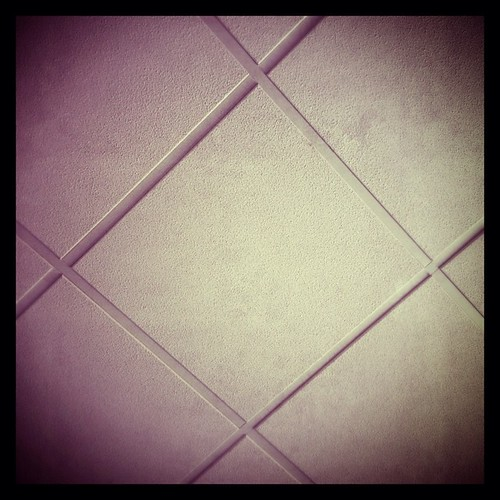 #fmsphotoaday July 13 - Look up