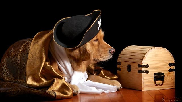 Captain Henry