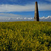 The Cosway Obelisk - Bilsington